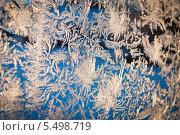 Купить «Фактура изморозь», фото № 5498719, снято 19 ноября 2017 г. (c) Tamara Sushko / Фотобанк Лори