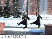 Купить «Смена караула у Могилы Неизвестного солдата а Александровском саду зимой», эксклюзивное фото № 5509743, снято 4 марта 2013 г. (c) lana1501 / Фотобанк Лори