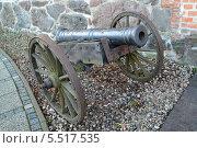Купить «Артиллерийское орудие XVIII века на деревянном лафете», фото № 5517535, снято 4 января 2014 г. (c) Ирина Борсученко / Фотобанк Лори