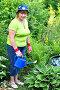 Зрелая женщина-садовник поливает растения возле декоративного пруда, фото № 5518471, снято 30 мая 2012 г. (c) Анна Мартынова / Фотобанк Лори