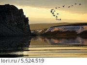 Купить «Летящие гуси на фоне реки Пясины», фото № 5524519, снято 25 июля 2008 г. (c) Егорова Елена / Фотобанк Лори