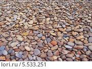Гальки на пляже. Стоковое фото, фотограф Opra / Фотобанк Лори