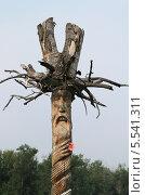 Купить «Деревянный идол», эксклюзивное фото № 5541311, снято 28 июня 2013 г. (c) Анатолий Матвейчук / Фотобанк Лори