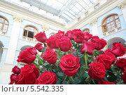 Купить «Большой яркий букет из красных роз в зале с витражным потолком», фото № 5542335, снято 4 сентября 2012 г. (c) Losevsky Pavel / Фотобанк Лори