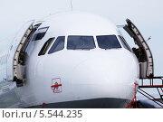 Купить «Нос и кабина самолета в аэропорту крупным планом», фото № 5544235, снято 22 мая 2012 г. (c) Losevsky Pavel / Фотобанк Лори