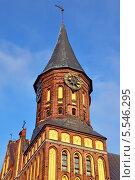 Купить «Башня Кафедрального собора Кёнигсберга. Готика 14 века. Символ города Калининград (до 1946 кода Кёнигсберг), Россия», фото № 5546295, снято 9 июня 2013 г. (c) Сергей Трофименко / Фотобанк Лори