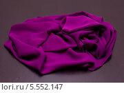Купить «Фиолетовый шарфик», фото № 5552147, снято 18 декабря 2013 г. (c) Morgenstjerne / Фотобанк Лори
