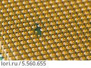 ЦПУ процессор. Стоковое фото, фотограф Ekaterina Klementyeva / Фотобанк Лори