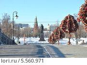 Купить «Вид на памятник Репину и Московский Кремль с Лужкова моста», эксклюзивное фото № 5560971, снято 4 марта 2013 г. (c) lana1501 / Фотобанк Лори