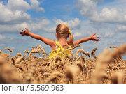 Девочка в пшеничном поле стоит, раскинув руки. Стоковое фото, фотограф Tanya Lomakivska / Фотобанк Лори