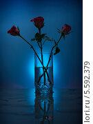 Розы в стакане с водой. Стоковое фото, фотограф Онипенко Михаил / Фотобанк Лори