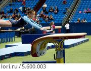Гимнастка выполняет упражнение в опорном прыжке на 20 Международном турнире по спортивной гимнастике на Кубок Михаила Воронина в Москве стадион Олимпийский (2013 год). Редакционное фото, фотограф Николай Винокуров / Фотобанк Лори
