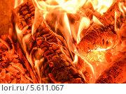 Пылающий огонь в печи. Стоковое фото, фотограф Ксения Егорова / Фотобанк Лори
