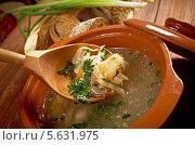 Купить «Русские щи из квашеной капусты», фото № 5631975, снято 17 февраля 2014 г. (c) Александр Fanfo / Фотобанк Лори