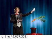 Купить «Фокусник вытаскивает из цилиндра морковку», фото № 5637339, снято 25 апреля 2013 г. (c) Sergey Nivens / Фотобанк Лори
