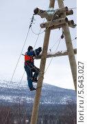 Электрик-верхолаз работает на опоре ЛЭП 10кВ. Стоковое фото, фотограф Александр Новиков / Фотобанк Лори