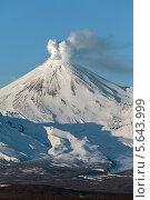 Купить «Авачинский вулкан. Камчатка», фото № 5643999, снято 25 февраля 2014 г. (c) А. А. Пирагис / Фотобанк Лори