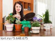 Молодая женщина занимается пересадкой комнатных цветов у себя дома. Стоковое фото, фотограф Яков Филимонов / Фотобанк Лори