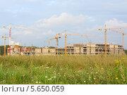 Купить «Строительство здания с помощью строительных кранов на фоне зеленой травы и голубого неба», фото № 5650059, снято 25 августа 2012 г. (c) Losevsky Pavel / Фотобанк Лори