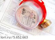 Счетчик учета воды на платеже, эксклюзивное фото № 5652663, снято 23 августа 2013 г. (c) Дудакова / Фотобанк Лори