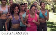 Купить «Fitness class jogging on the spot together», видеоролик № 5653859, снято 25 сентября 2018 г. (c) Wavebreak Media / Фотобанк Лори