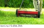 Купить «Man mowing the grass», видеоролик № 5656355, снято 18 октября 2018 г. (c) Wavebreak Media / Фотобанк Лори