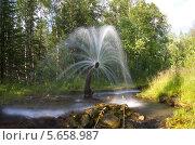 Фонтан в лесу (2013 год). Редакционное фото, фотограф Мещеряков Александр / Фотобанк Лори