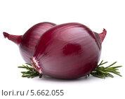 Купить «Фиолетовые луковицы и ветки розмарина на белом фоне», фото № 5662055, снято 4 февраля 2013 г. (c) Natalja Stotika / Фотобанк Лори