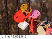 Купить «Замки любви», эксклюзивное фото № 5662843, снято 1 марта 2014 г. (c) Алёшина Оксана / Фотобанк Лори