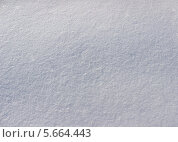 Купить «Текстура снега (фон)», фото № 5664443, снято 21 февраля 2014 г. (c) Светлана Ильева (Иванова) / Фотобанк Лори
