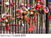 Купить «Замки любви на мосту», эксклюзивное фото № 5664895, снято 1 марта 2014 г. (c) Алёшина Оксана / Фотобанк Лори