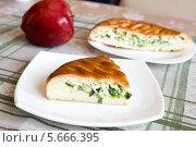 Купить «Домашний пирог с яйцом и зеленым луком», фото № 5666395, снято 27 февраля 2014 г. (c) Володина Ольга / Фотобанк Лори