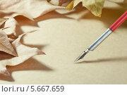 Перо для письма и кленовые листья на бумаге. Стоковое фото, фотограф Anhelina Tarasenko / Фотобанк Лори