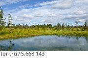 Купить «Северный пейзаж с лесами, синим озером и болотом», фото № 5668143, снято 12 июля 2013 г. (c) Валерия Попова / Фотобанк Лори