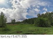 Западный ветер, поле и лес. Стоковое фото, фотограф Забалуев Игорь Анатолич / Фотобанк Лори