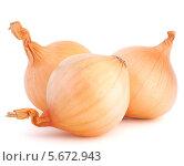 Купить «Три луковицы на белом фоне», фото № 5672943, снято 6 ноября 2012 г. (c) Natalja Stotika / Фотобанк Лори
