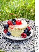 Слоеный торт со свежими ягодами на фоне зеленой травы. Стоковое фото, агентство BE&W Photo / Фотобанк Лори
