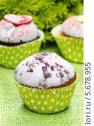 Купить «Кексы в зеленых формочках», фото № 5678955, снято 20 февраля 2019 г. (c) BE&W Photo / Фотобанк Лори