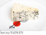 Купить «Мягкий сыр с благородной плесенью», эксклюзивное фото № 5679571, снято 14 января 2014 г. (c) Александр Щепин / Фотобанк Лори