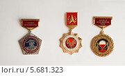 Купить «Медали», фото № 5681323, снято 7 марта 2014 г. (c) Михалева Юлия / Фотобанк Лори
