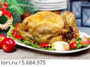 Купить «Жареная курица на подносе с овощами», фото № 5684975, снято 19 февраля 2020 г. (c) BE&W Photo / Фотобанк Лори