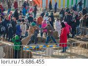 Борьба мешками на масленицу (2014 год). Редакционное фото, фотограф Алексей Меньшиков / Фотобанк Лори