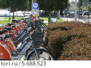 Прокат велосипедов (2014 год). Редакционное фото, фотограф Валерий Волобоев / Фотобанк Лори