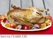 Купить «Жареный гусь с яблоками и овощами на деревянном столе», фото № 5689135, снято 15 декабря 2018 г. (c) BE&W Photo / Фотобанк Лори