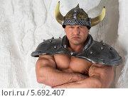 Купить «Мускулистый мужчина в костюме викинга», фото № 5692407, снято 3 октября 2013 г. (c) Losevsky Pavel / Фотобанк Лори