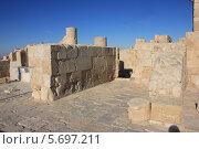 Древние руины города Авдат в Израиле (2012 год). Стоковое фото, фотограф Светлана Першенкова / Фотобанк Лори