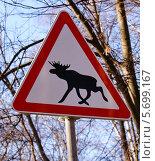 Купить «Лоси - предупреждающий знак», фото № 5699167, снято 9 марта 2014 г. (c) Павел Кричевцов / Фотобанк Лори