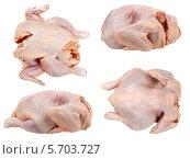 Сырые тушки курицы на белом фоне. Стоковое фото, фотограф Сергей Видинеев / Фотобанк Лори