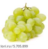 Купить «Ветка зеленого винограда на белом фоне», фото № 5705899, снято 23 июля 2013 г. (c) Natalja Stotika / Фотобанк Лори
