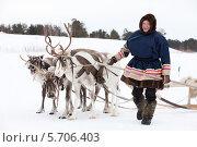 Купить «Мужчина оленевод ведет оленью упряжку», фото № 5706403, снято 14 марта 2014 г. (c) Владимир Мельников / Фотобанк Лори